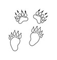 icon bear trails vector image vector image