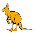 kangaroo icon cartoon vector image vector image