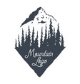 mountain logotype logo forest nature forest vector image vector image