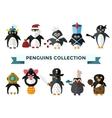 Penguin set vector image vector image
