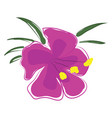 pink orchid flower with yellow pestle and green vector image
