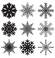 snowflakes set isolated vector image