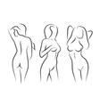 women naked human beauty body drawing vector image