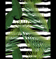 Beautiful tropical abstract color and green palm