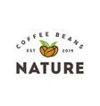 coffee natural logo vintage label product vector image vector image