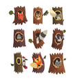 cute animals and birds sitting in hollow tree vector image
