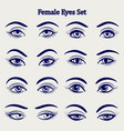 female eyes sketch set vector image vector image