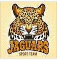 Jaguars - Sport Team Design vector image vector image
