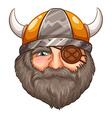 Man Viking vector image