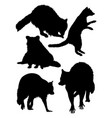 raccoon animal silhouette vector image vector image