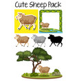a pack of cute sheep vector image vector image