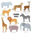 african animals savanna elephant rhino vector image