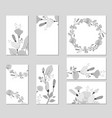 botanic card with wild flowers leaves vector image vector image