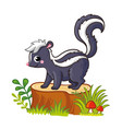 cute skunk standing on a stump with mushrooms and vector image vector image