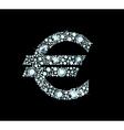 Diamond Euro Sign vector image vector image