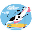 fun cow riding a scooter vector image vector image