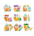 glass jars of herbal honey set natural golden vector image vector image