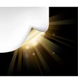 golden paper vector image vector image
