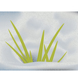 Green grass in snow vector image