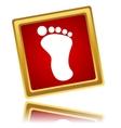 New footprint vector image vector image