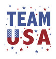 team usa vector image vector image