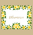 tropical hawaiian frame with jungle exotic flowers vector image