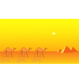 Camels and Pyramids vector image