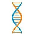 DNA and molecule symbol vector image