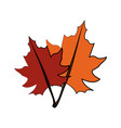 fall leaves icon image vector image vector image