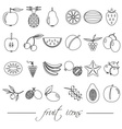 fruit theme black simple outline icons set eps10 vector image vector image