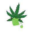 marijuana knitting isolated on a white background vector image