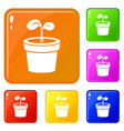 plant icons set color vector image vector image