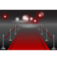 red carpet vector image vector image