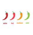 red hot chili pepper level vector image