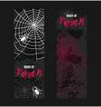 web spider pattern spidery halloween vector image
