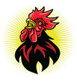 angry rooster fighting sports mascot logo vector image vector image