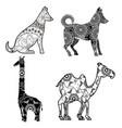 animals with skin boho style vector image