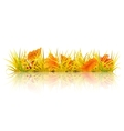 Autumn grass vector image vector image