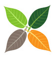 four leaves seasons concept vector image