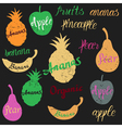 fruit logo vector image vector image