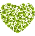 Heart made of green leaves Eco concept vector image vector image