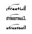 streetball logo for the team and the cup vector image vector image