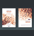 annual report templates vector image