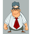 Cartoon smiling man in a shirt and a tie standing vector image vector image