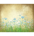 floral background paper vector image vector image