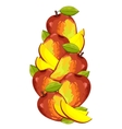 Mango isolated composition vector image vector image