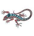 patterned lizard vector image vector image