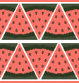 seamless pattern a piece watermelon on a vector image vector image