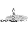 what to get on a beach honeymoon text word cloud vector image vector image