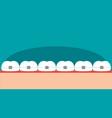 teeth braces flat vector image